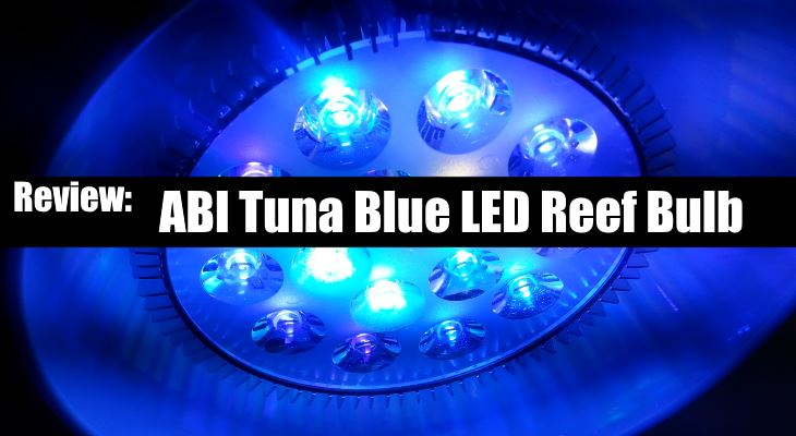 ABI Tuna Blue LED Reef Bulb Review
